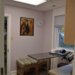 Cat and small dog exam room #1
