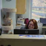 Lisa on reception desk with Eliza