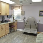 Large Dog Exam Room #4
