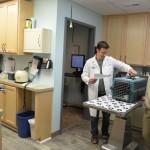 Treatment and Xray room